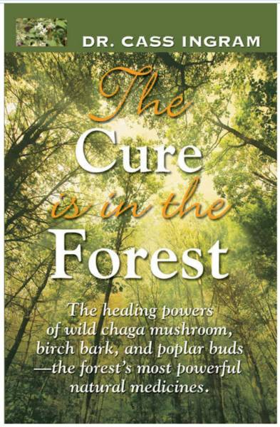 Chaga - coffee substitute and remedy for cancer - cure in the forest by cass ingram
