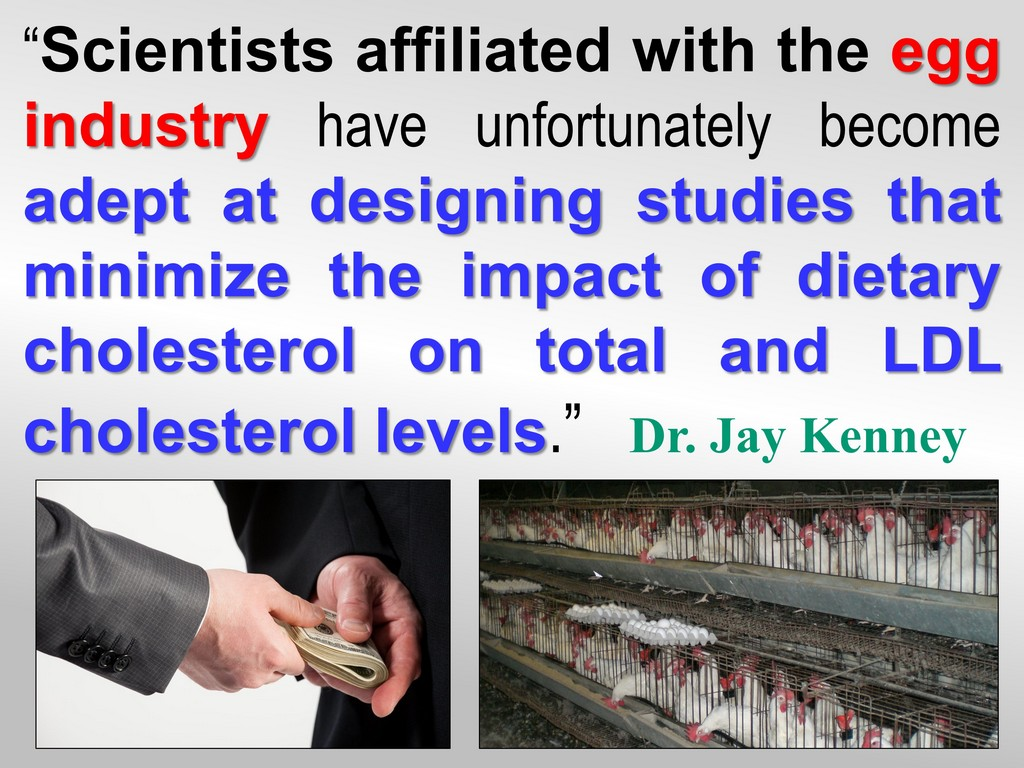 Truth about Eggs & Cholesterol