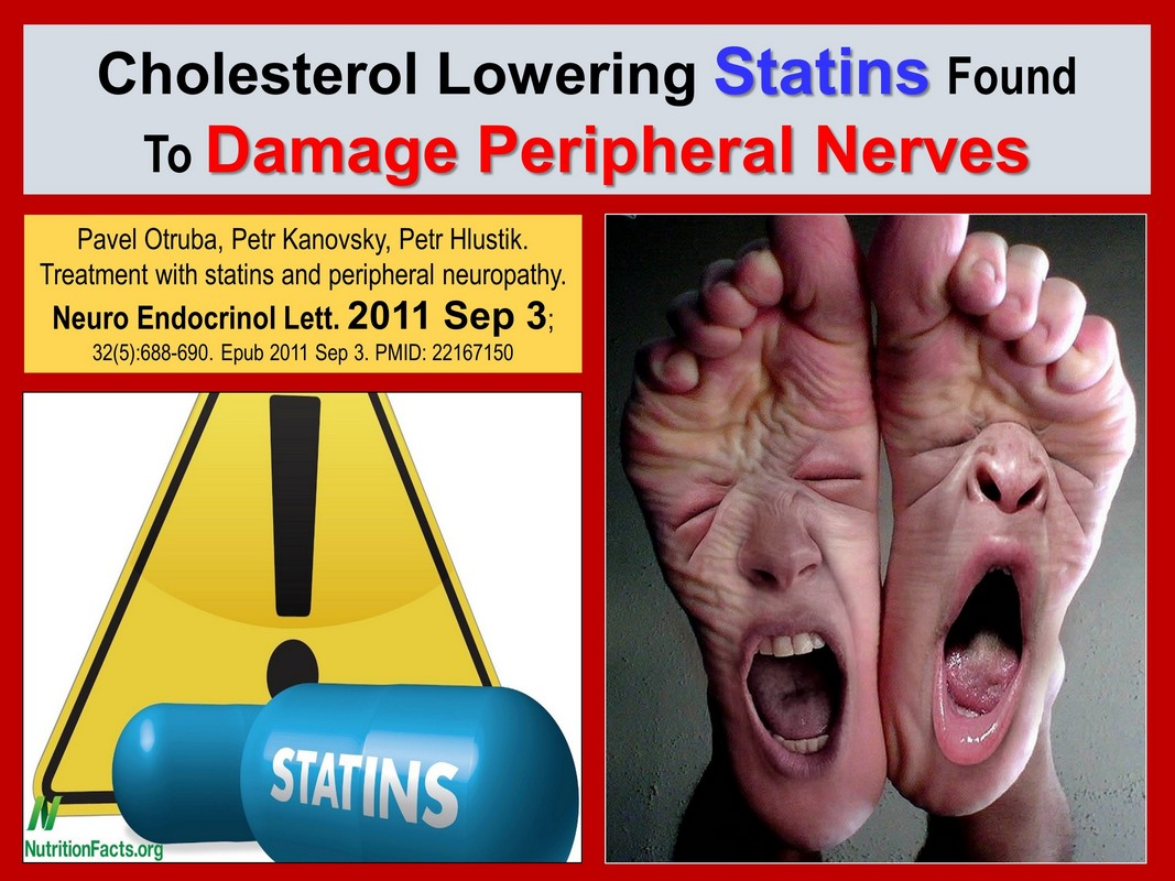 statins damage peripheral nerves (peripheral neuropathy) death by medicine