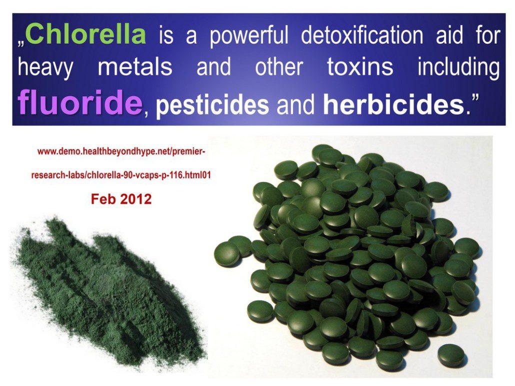 Chlorella: Most incredible superfood