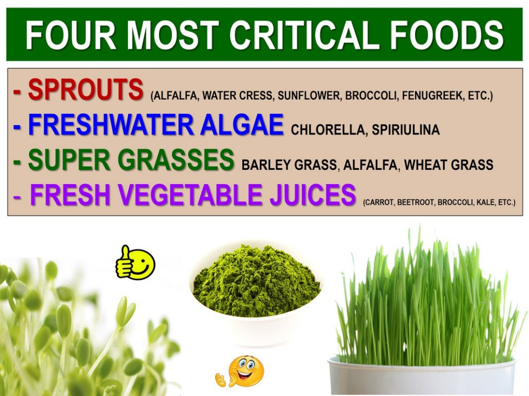 Four most critical super foods: sprouts, chlorella, barley grass, vegetable juices