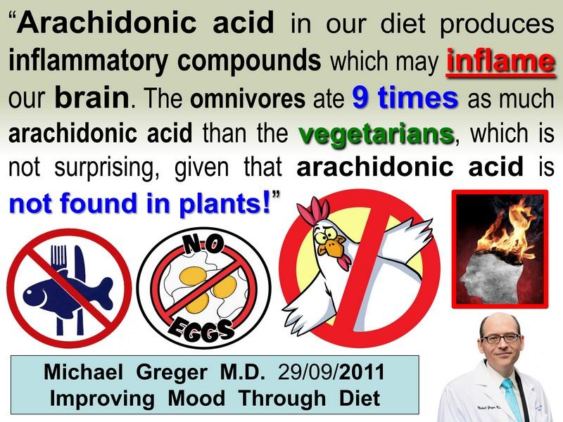 Alzheimer's arachidonic acid brain inflammation