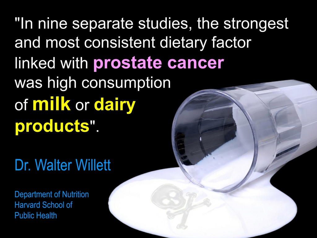 milk and dairy cause Prostate Cancer