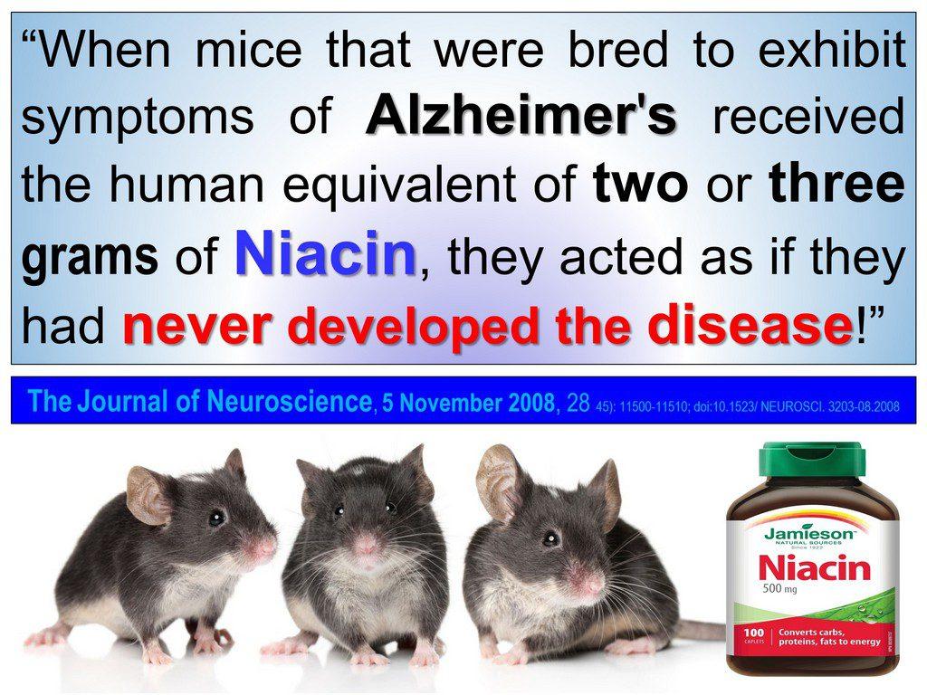 Alzheimer's niacin B3