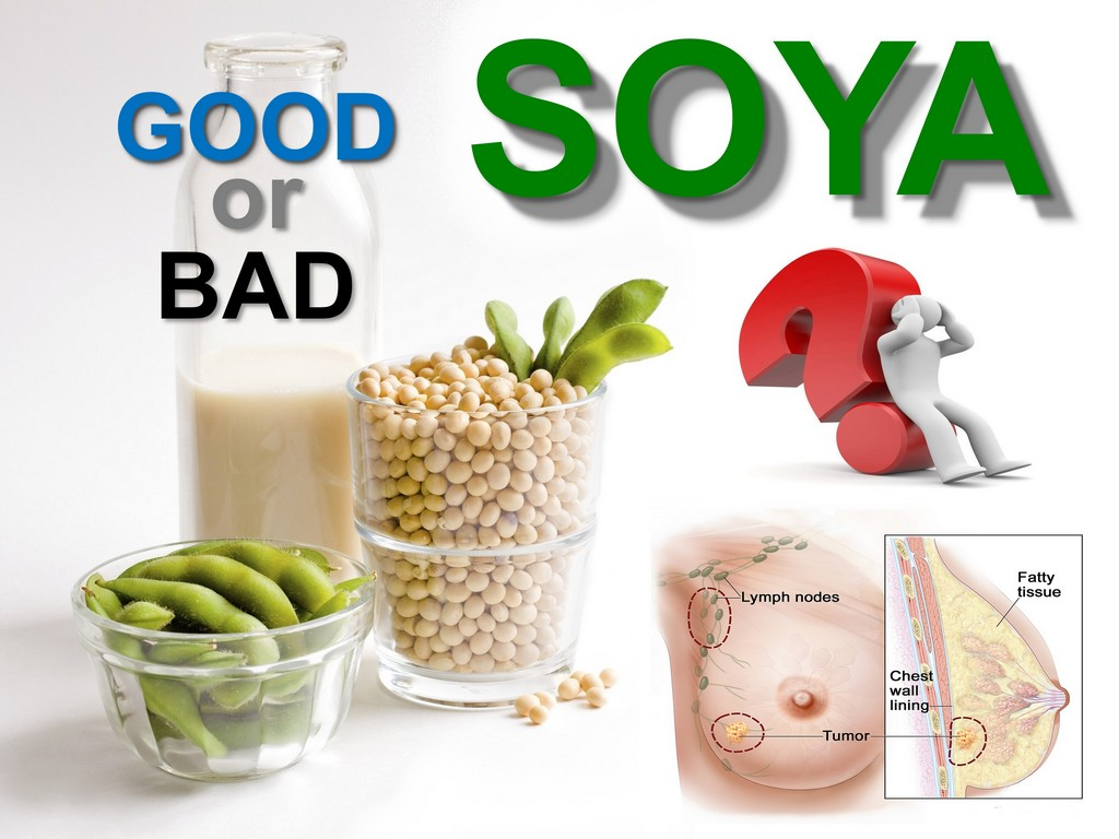 Soya and Breast Cancer (Truth)
