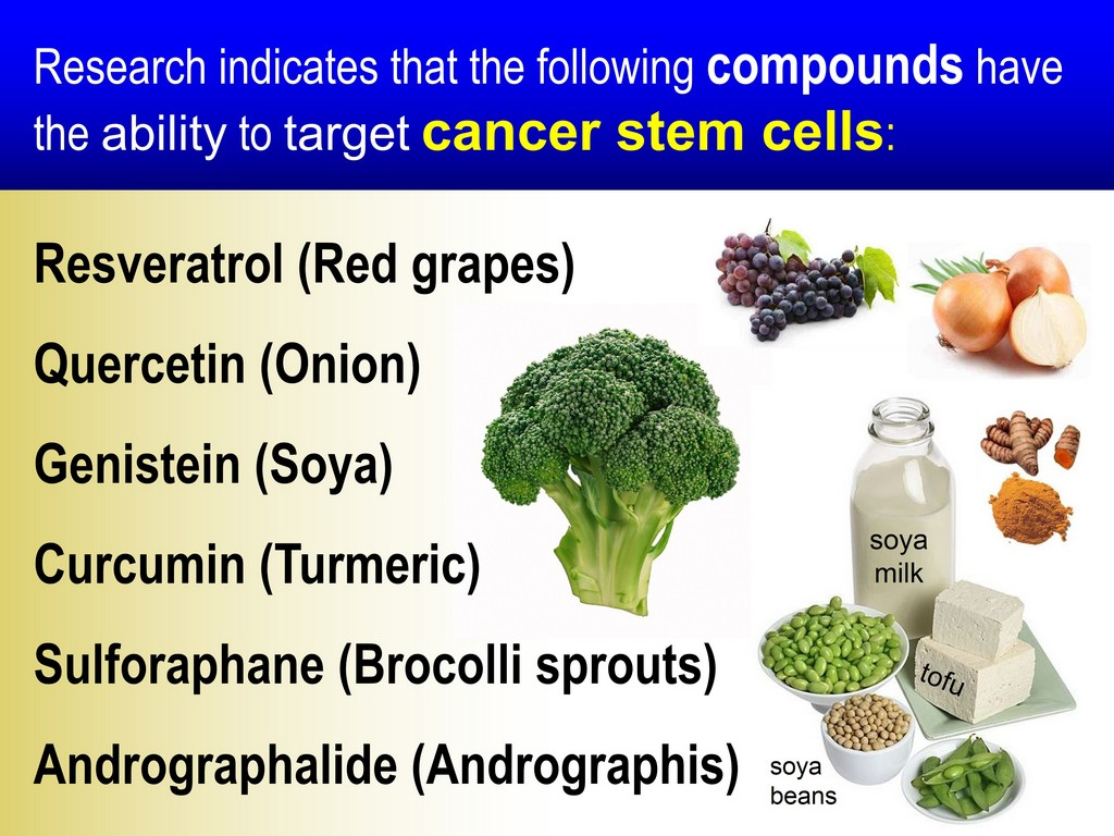 COMPOUNDS THAT KILL CANCER STEM CELLS TURMERIC CURCUMIN RESVERATROL