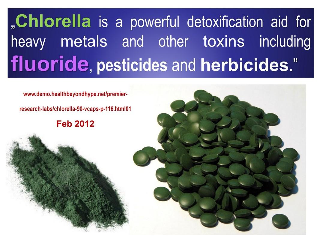 Chlorella & Spirulina effective in treating Hepatitis C