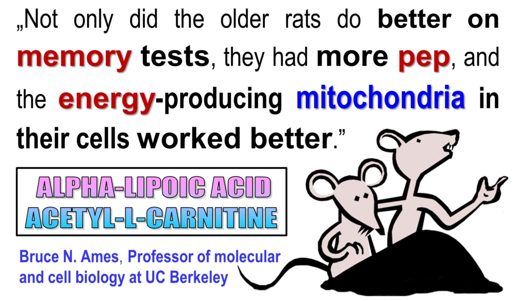 Alpha Lipoic Acid to Feel Young Again