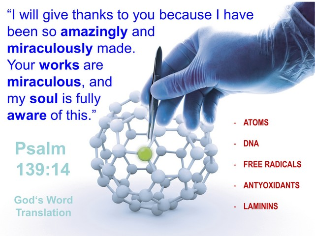 Atoms, Dna & Laminins - Wonders Of God'S Intelligent Design